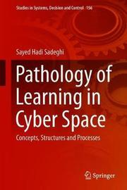Pathology of Learning in Cyber Space by Sayed Hadi Sadeghi