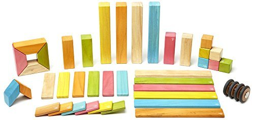 Tegu : Magnetic Wooden Blocks 42pc (Tints)