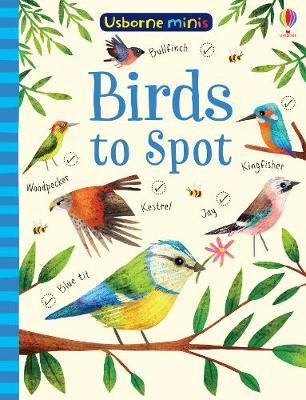 Birds to Spot by Sam Smith image