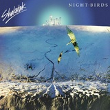Night Birds by Shakatak