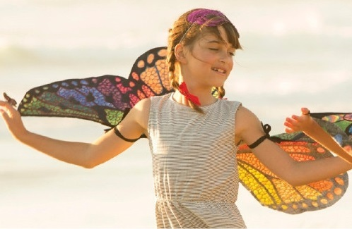 Design Your Own Butterfly Wings Craft Kit Toy At Mighty Ape