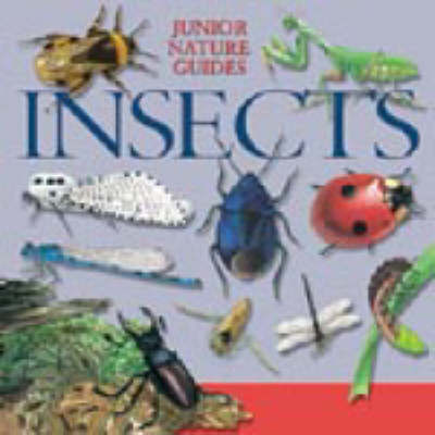 JR NATURE GUIDES INSECTS