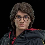 """Harry Potter - Goblet of Fire (Triwizard) 12"""" Figure"""