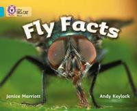 Fly Facts by Janice Marriott image