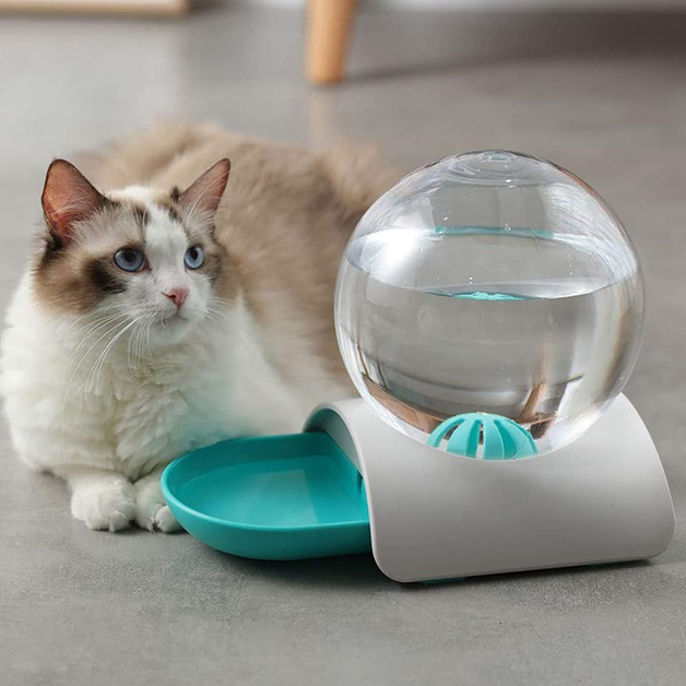 2.8L Bubble Cat Drinking Fountain - Large (Blue)
