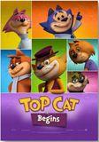 Top Cat Begins DVD