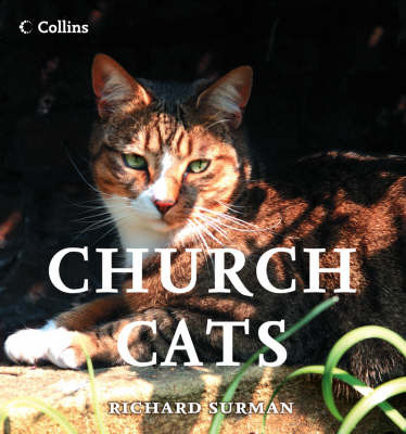 Church Cats by Richard Surman image