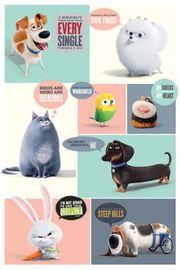Secret Life Of Pets: Maxi Poster - Boxes (478)