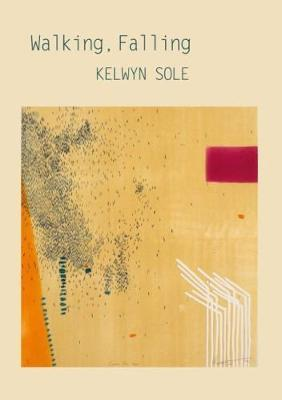 Walking. Falling by Kelwyn Sole