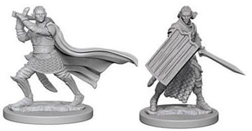 Pathfinder Deep Cuts: Unpainted Miniature Figures - Elf Male Paladin image