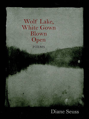 Wolf Lake, White Gown Blown Open by Diane Seuss