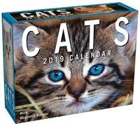 Cats 2019 Mini Day-to-Day Calendar by Andrews McMeel Publishing