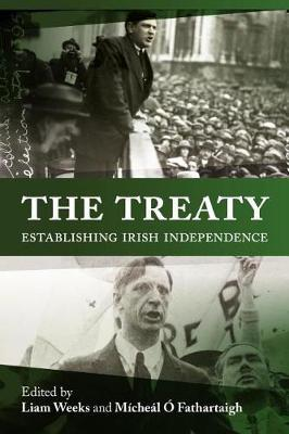 The Anglo-Irish Treaty Debates image