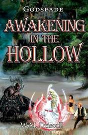 Awakening in the Hollow by W M Driscoll image
