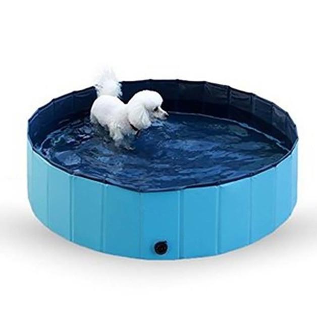 Ape Basics: Folding Pet Swimming Pool