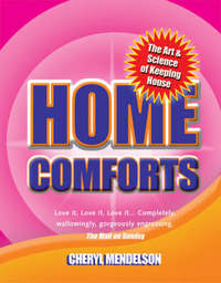 Home Comforts by Cheryl Mendelson image