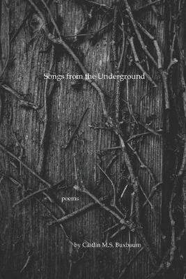Songs from the Underground by Caitlin M S Buxbaum image