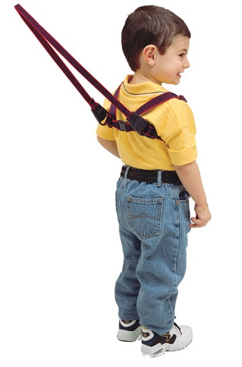 Jolly Jumper Baby Harness image