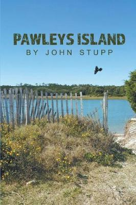 Pawleys Island by John Stupp