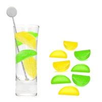 Fishbowl: Lemon & Lime Ice Cubes (Set of 12)