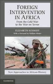 New Approaches to African History: Series Number 7 by Elizabeth Schmidt