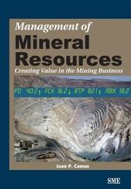 Management of Mineral Resources by Juan P. Camus