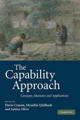 The Capability Approach image