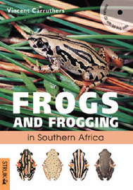 Frogs and Frogging in Southern Africa by Vincent Carruthers image