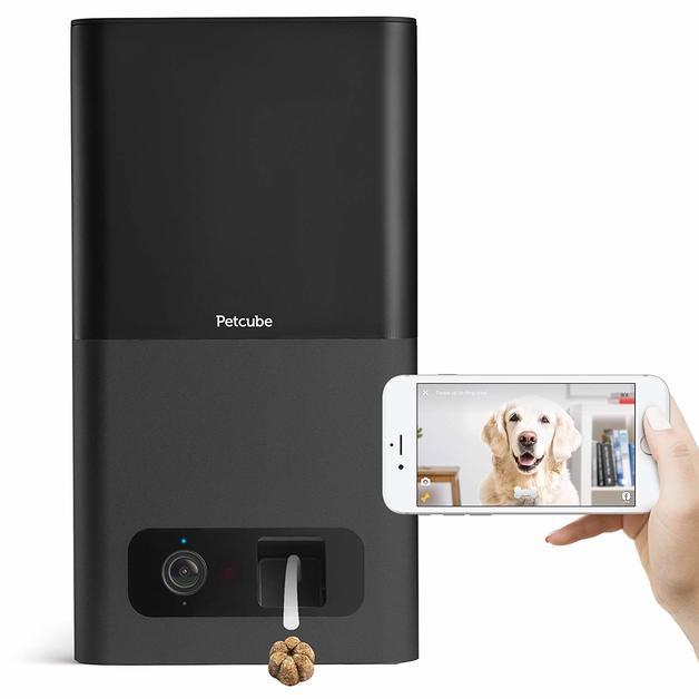 Petcube Bites Pet Camera with Treat Dispenser: