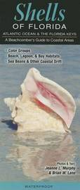 Shells of Florida Atlantic Ocean and the Florida Keys: A Beachcomber's Guide to Coastal Areas by Jeanne L Murhpy