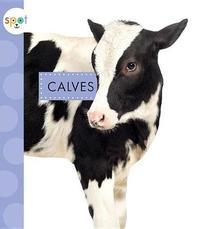 Calves by Anastasia Suen
