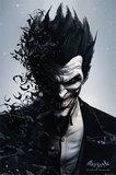 Batman Arkham Origins Joker Wall Poster (98)
