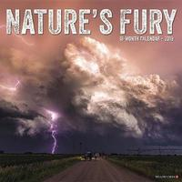 Nature's Fury 2019 Wall Calendar by Willow Creek Press