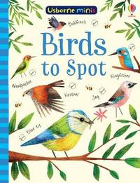 Birds to Spot by Sam Smith