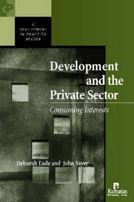 Development and the Private Sector image