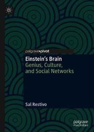 Einstein's Brain by Sal Restivo