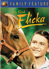 My Friend Flicka on DVD