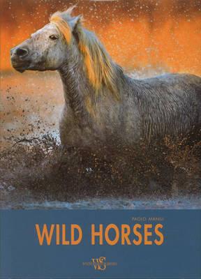 Wild Horses by Paolo Manili