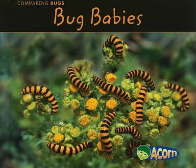 Bug Babies by Charlotte Guillain