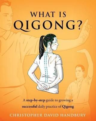 What Is Qigong? by Christopher David Handbury image