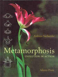 Metamorphosis by Andreas Suchantke