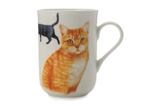 Maxwell & Williams - Cashmere Pets Cat British Shorthair Mug (300ml)