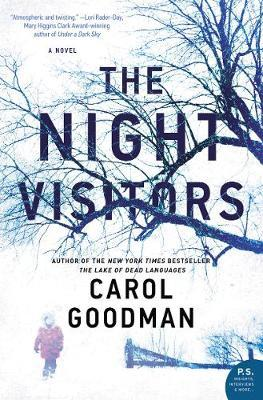 The Night Visitors by Carol Goodman image