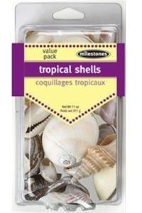 Milestones Shells - Tropical Mix image