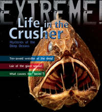 Extreme Science: Life in the Crusher by Trevor Day image