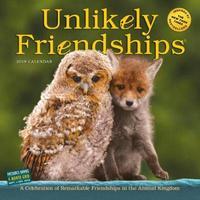 2019 Unlikely Friendships Wall Calendar by Workman Publishing