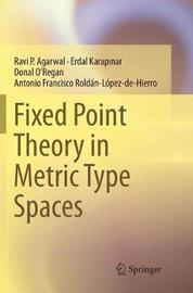 Fixed Point Theory in Metric Type Spaces by Ravi P Agarwal image