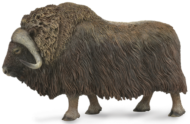 CollectA - Musk Ox (L)