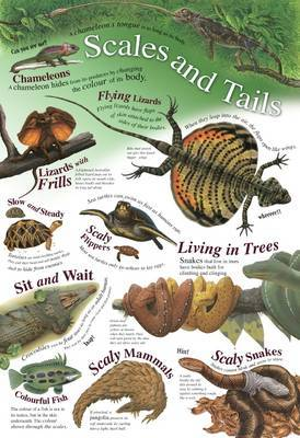 Scales and Tails image
