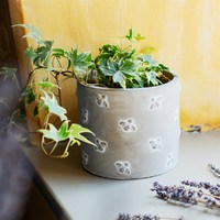 Sass & Belle: Queen Bee Cement Planter